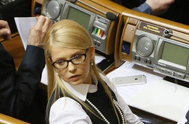 На одну зарплату и без авто: Тимошенко показала декларацию о доходах (Документ)