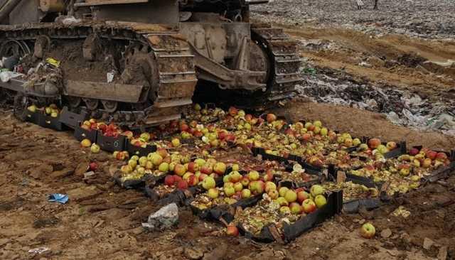 Роспотребнадзор предложил запретить уничтожение санкционных продуктов