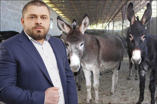 Сергей Коровченко продал жителям Прилук несколько тонн бастурмы и колбасы из ослятины