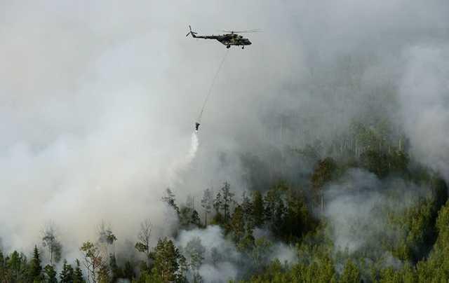 Генпрокуратура: леса в Иркутской области поджигали для сокрытия незаконных вырубок