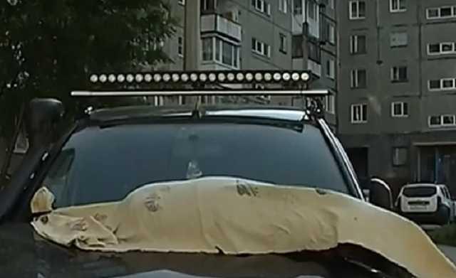 «Это война, зоозащитники». Житель Мурманска положил изуродованный труп собаки на внедорожник