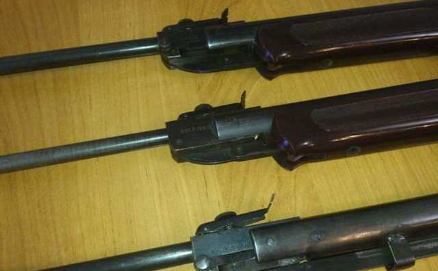 В Санкт-Петербурге на избирательном участке полиция обнаружила пневматические винтовки