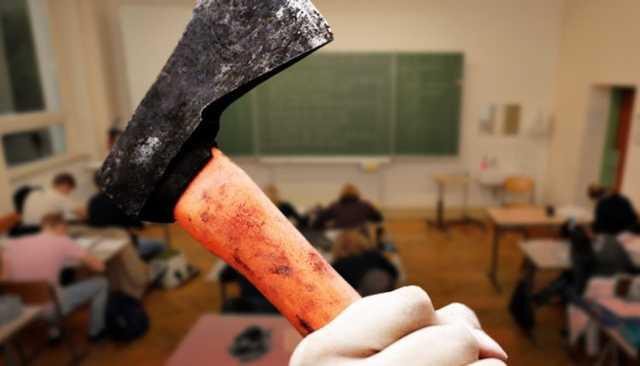 Во Владимире подросток пришел в школу с топором, чтобы отомстить одноклассникам за травлю