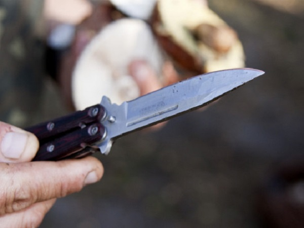 Соседи не слышали ничего подозрительного: стали известны подробности зверской расправы над семьей в Запорожье