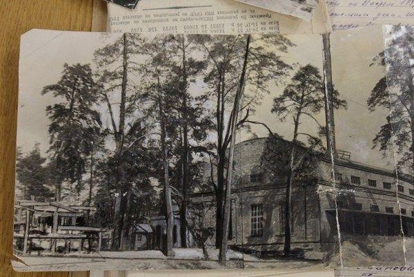 Фотошоп и Троцкий. Как один фотоснимок в 1937 году сломал несколько судеб