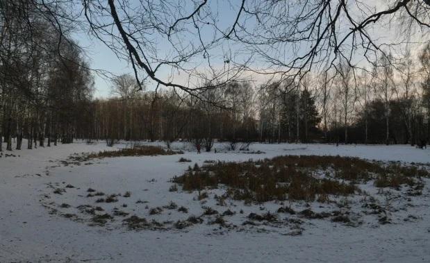 В Екатеринбурге нашли тело мальчика, в ритуальном убийстве подозревают родителей